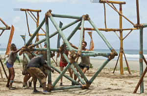 """Survivor version of """"Gleaming the Cube"""""""